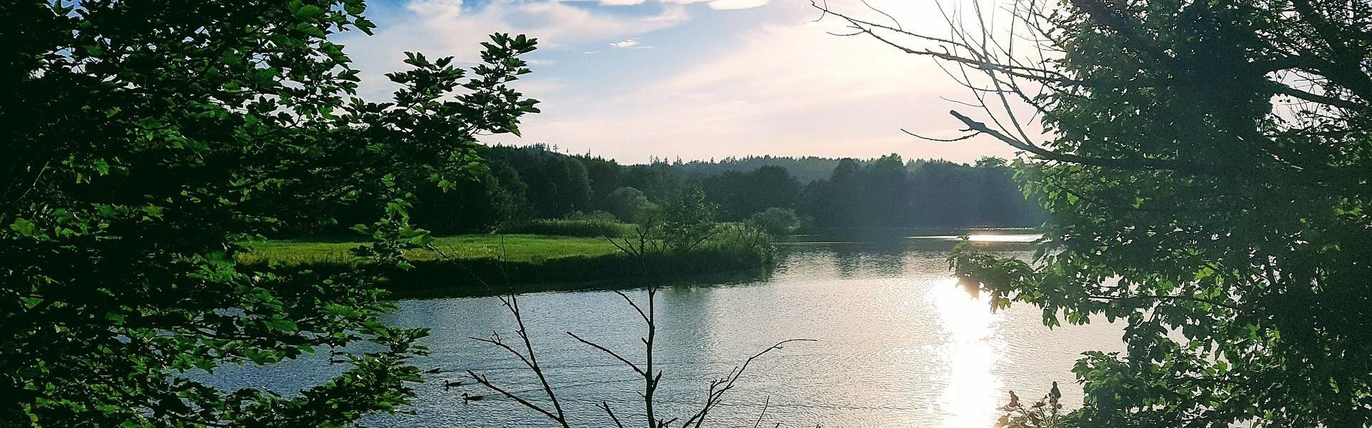 Jezioro w Rybniku